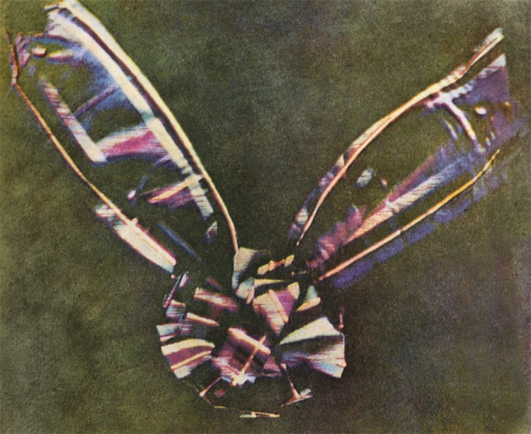 Tartan ribbon (1861)